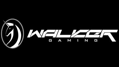 walker_gaming_horizontal25%ccca.jpg
